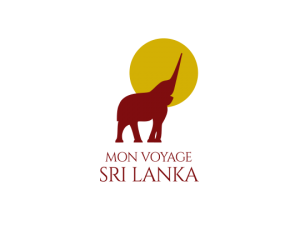 logo mvsl