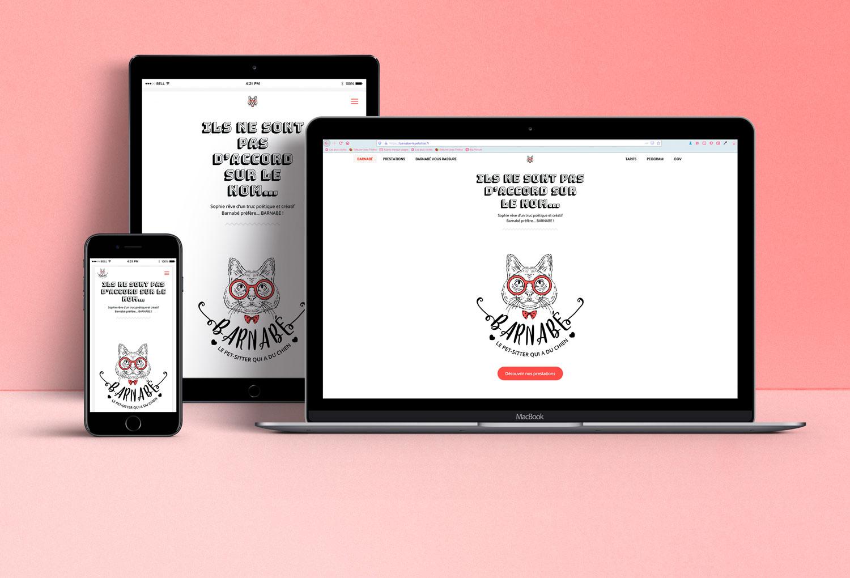 creation site web chambery