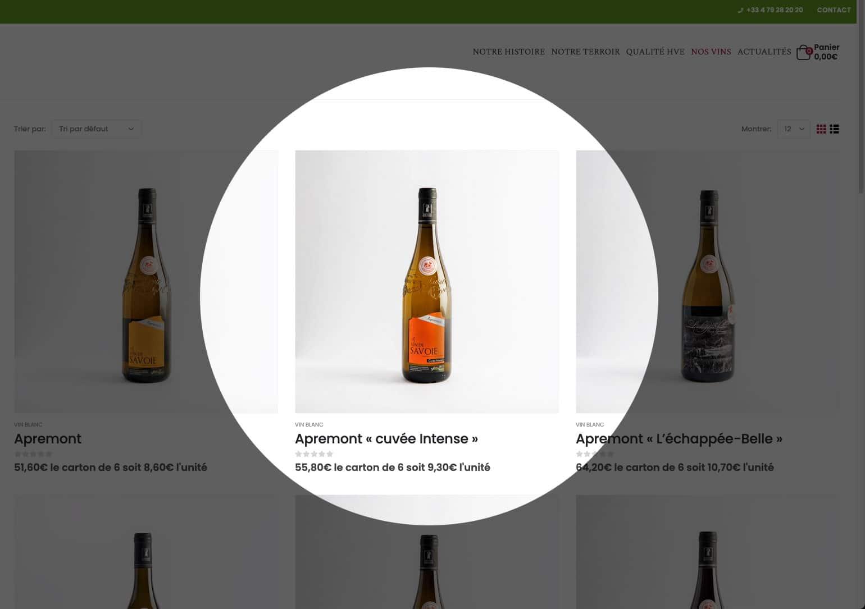 creation boutique en ligne savoie